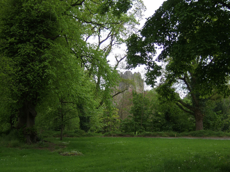 Blarney Castle in the Background