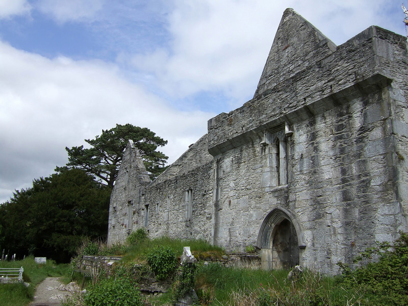 Abbey Ruins at Muckross Grounds