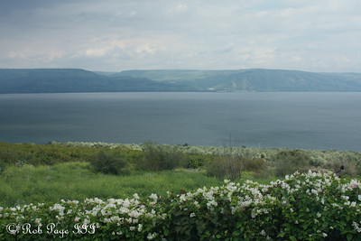 The Sea of Galilee - Galilee, Israel ... March 14, 2014 ... Photo by Rob Page III