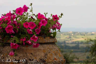 The Tuscan countryside - Siena, Italy ... May 28, 2013 ... Photo by Rob Page III