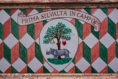 The Contrada della Selva. Gina Stipo's local neighborhood for the Palio - Siena, Italy ... May 29, 2013 ... Photo by Rob Page III