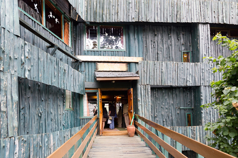 The Serena Mountain Lodge is at an altitude of 7200 feet in the Mount Kenya area.