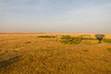 Hot-air balloon ride over Masai Mara plains at dawn - Kenya