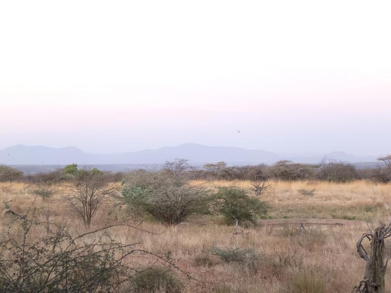 On the Road in the Samburu National Reserve - Kenya