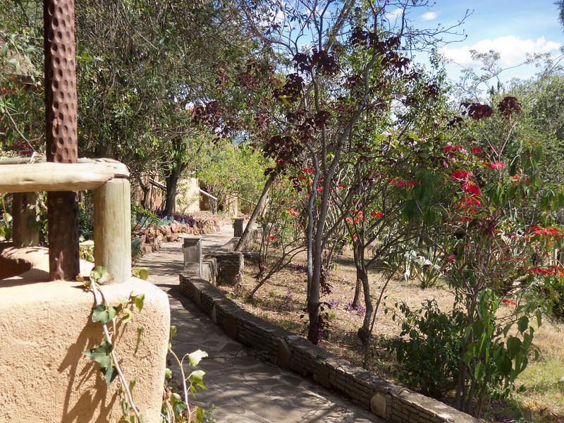 Grounds of the Masai Mara Lodge inside the Masai Mara National Reserve - Kenya