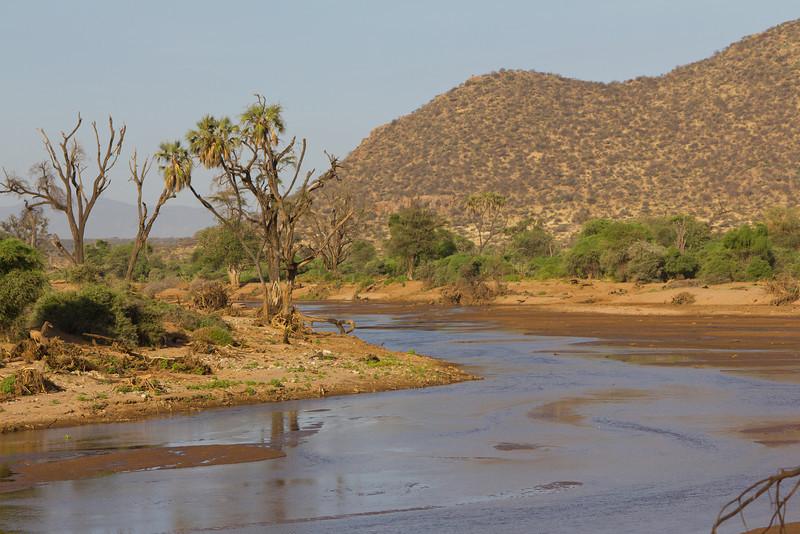 This is the Ewaso Ngiro River which runs through Samburu National Reserve - Kenya