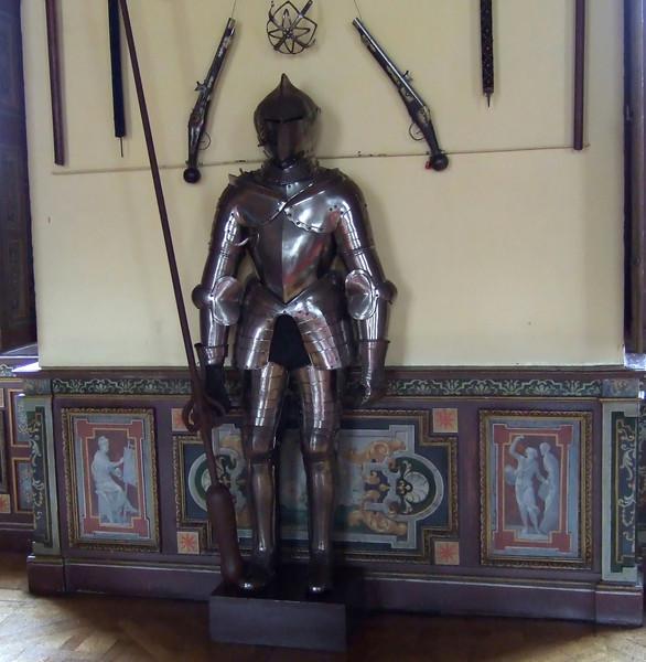 Chateau de Cheverny - Knight