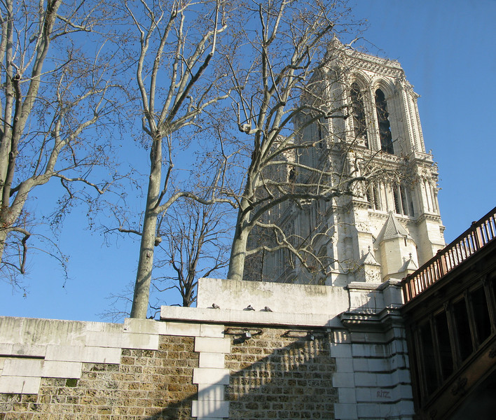 Notre-Dame Cathedral from the Seine
