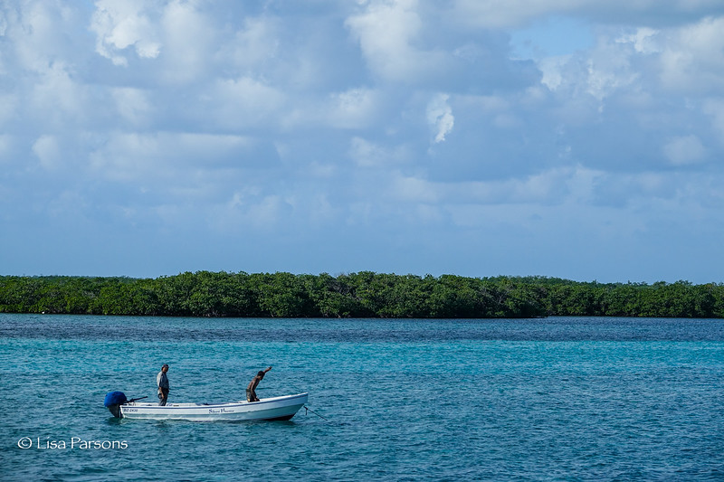 Fishermen with Mangroves in Background