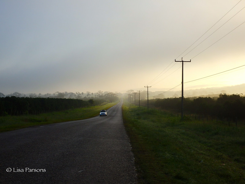 Morning Fog and Humidity