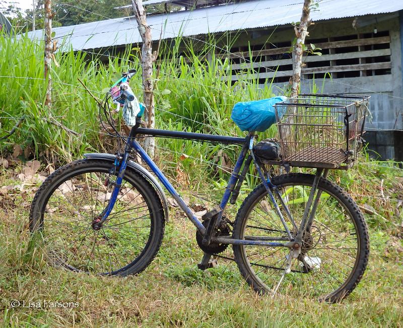 A Local's Commuter Bike