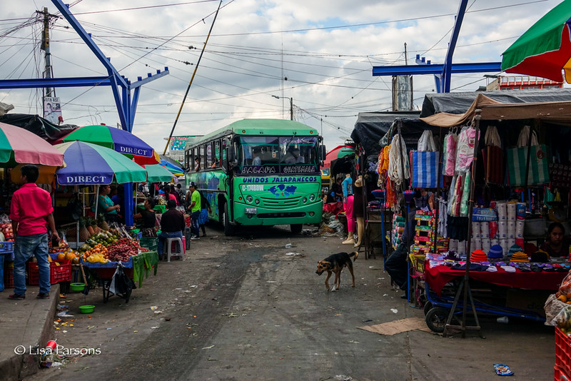 The Bus Terminal at the End of the Market