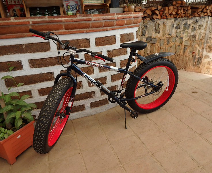 Fat Tire Mongoose