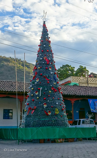 Christmas Tree in the Central Plaza