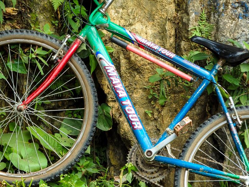 Maya Tour Bicycle