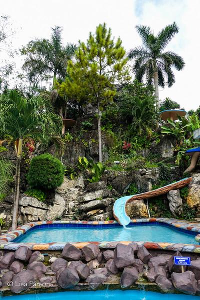 The Jungle Surrounding Us