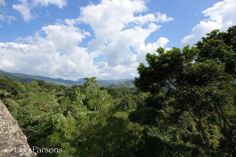 View From the Copan Ruins