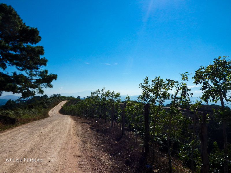 Continuing Road Along the Ridgeline