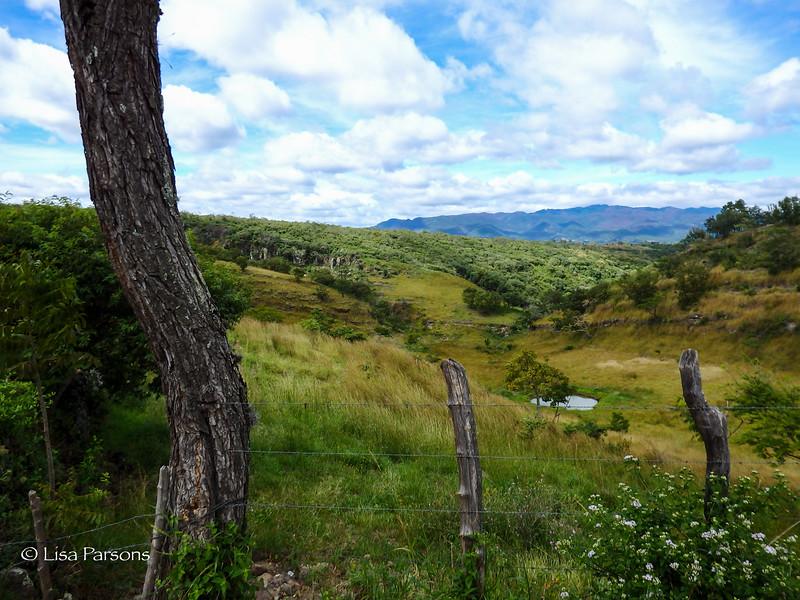 Fields as We Climb