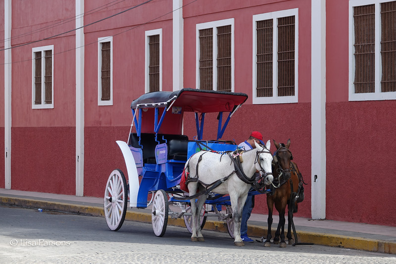 Another Horse Drawn Carriage