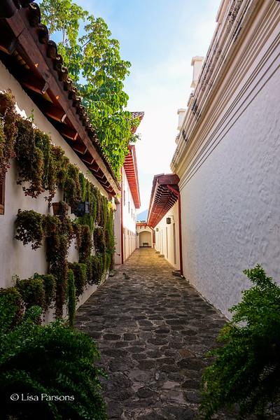 Cobblestone walkway