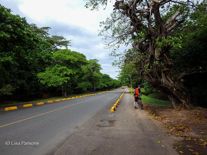Wow, Our First Bike Lane