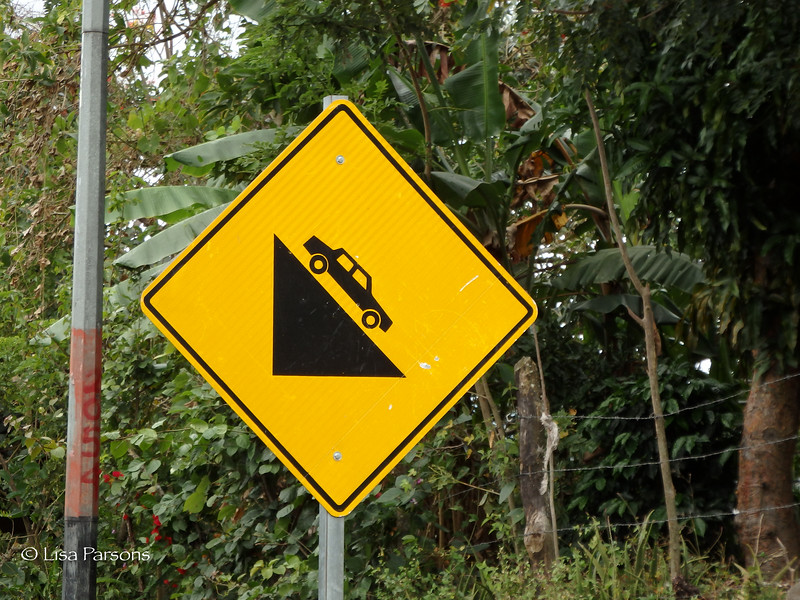 Steep Road Means Fun Road for Bicycles