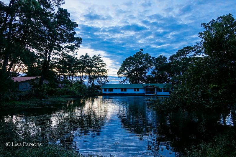 Sunrise on the Plantation