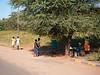 Street Life outside  Chobe National Park