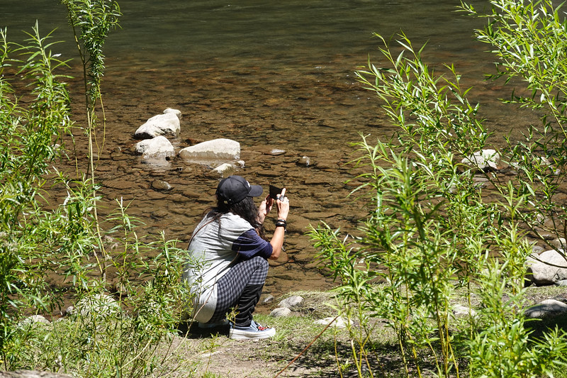 Tourist wife shooting video at river's edge in Chacabuco, Chile.