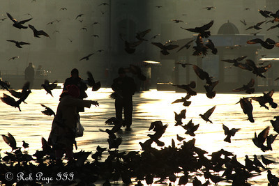 Feeding the pigeons - Istanbul, Turkey ... March 13, 2011 ... Photo by Rob Page III