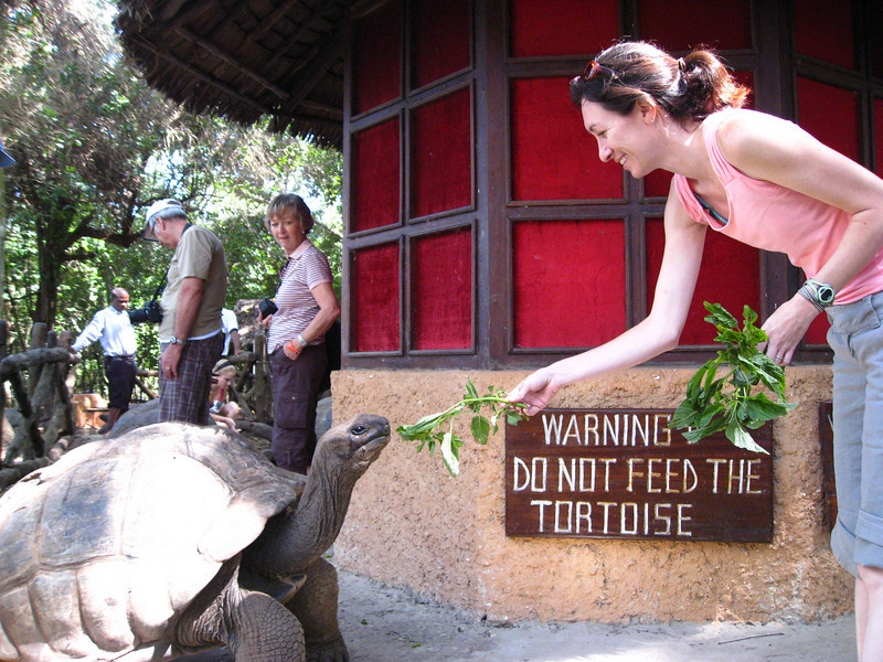 "The staff of the sanctuary encourage feeding the tortoises contrary to all the ""do not feed"" signs."