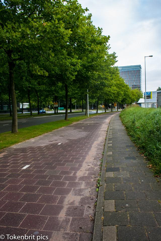IBC Walk to work LR -1265
