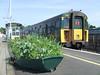 1498 at Lymington Pier Station. Sun 11.05.08