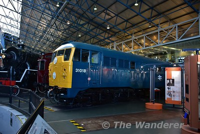 British Railways diesel electric locomotive AIA-AIA Class 31, No D5500 (31018) on display in the Great Hall at the National Railway Museum. Sun 12.11.17