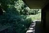 Highgate - Wilderness Walkabout Hidden London tour. Looking towards East Finchley. Fri 29.06.18