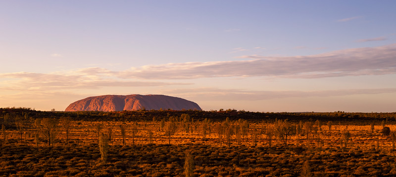 Northern Territory, Uluru - Sunrise over Uluru seen from a camel