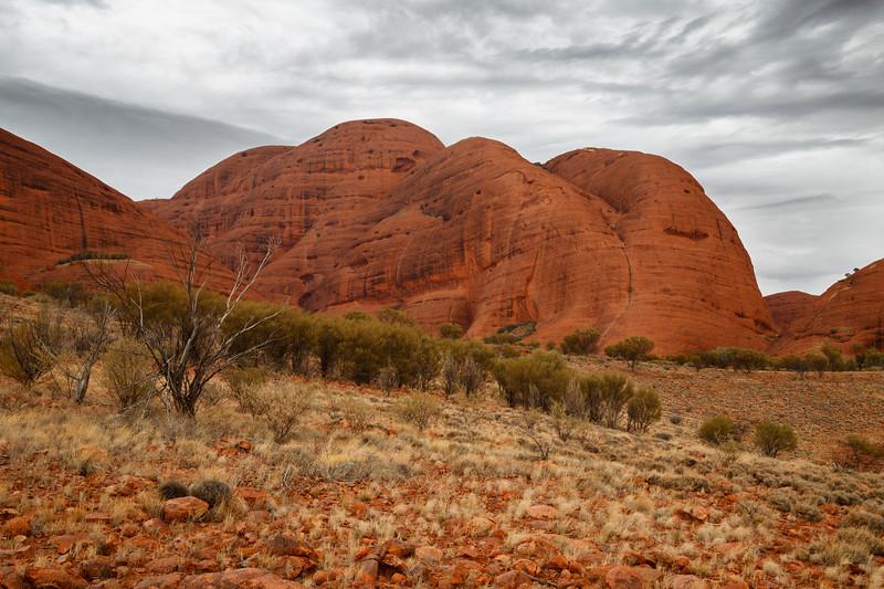 Northern Territory, Kata Tjuta - Desert scene