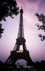 Eiffel tower with forground trees copy
