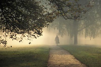 Hyde Park Fog UK2.5A