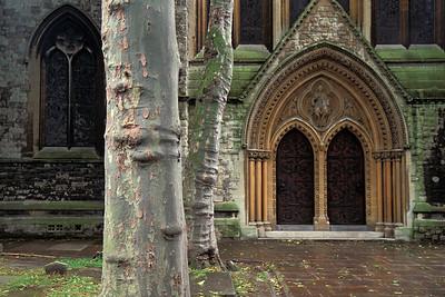 Trees & Doors UK4F