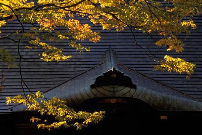 Temple Roof, Narita JPN6D