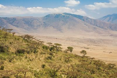 African Landscape 4227