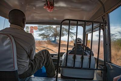 Road to Kilimanjaro 3691