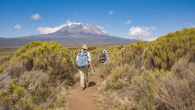 Hiking Toward Kili 3774