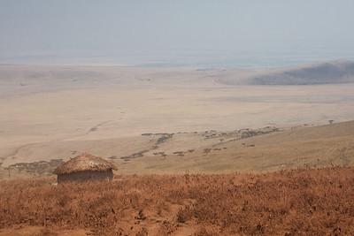 Red Dirt & Serengeti 4233