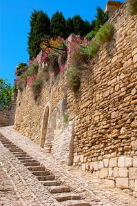 Flowered Steep Path