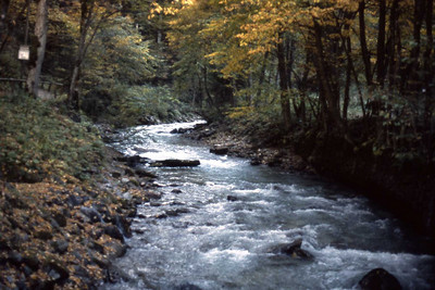 Partnach Gorge I