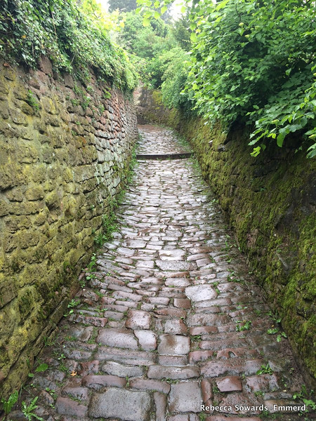 Walking up the slick wet cobblestone path