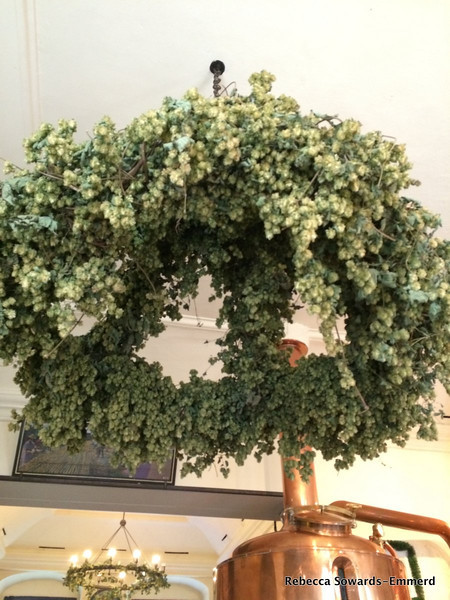 A hop wreath hanging from the ceiling. Cool!